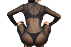 Felicia Hardon Big Tits Bikini Babe 022
