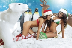Holly Peers Stacey Poole Plus Others Big Boob Christmas Lingerie 08