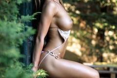 Justina Big Tits in Brown Bikini 003