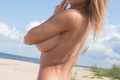 Viola Bailey Big Boobs on the Sand 11