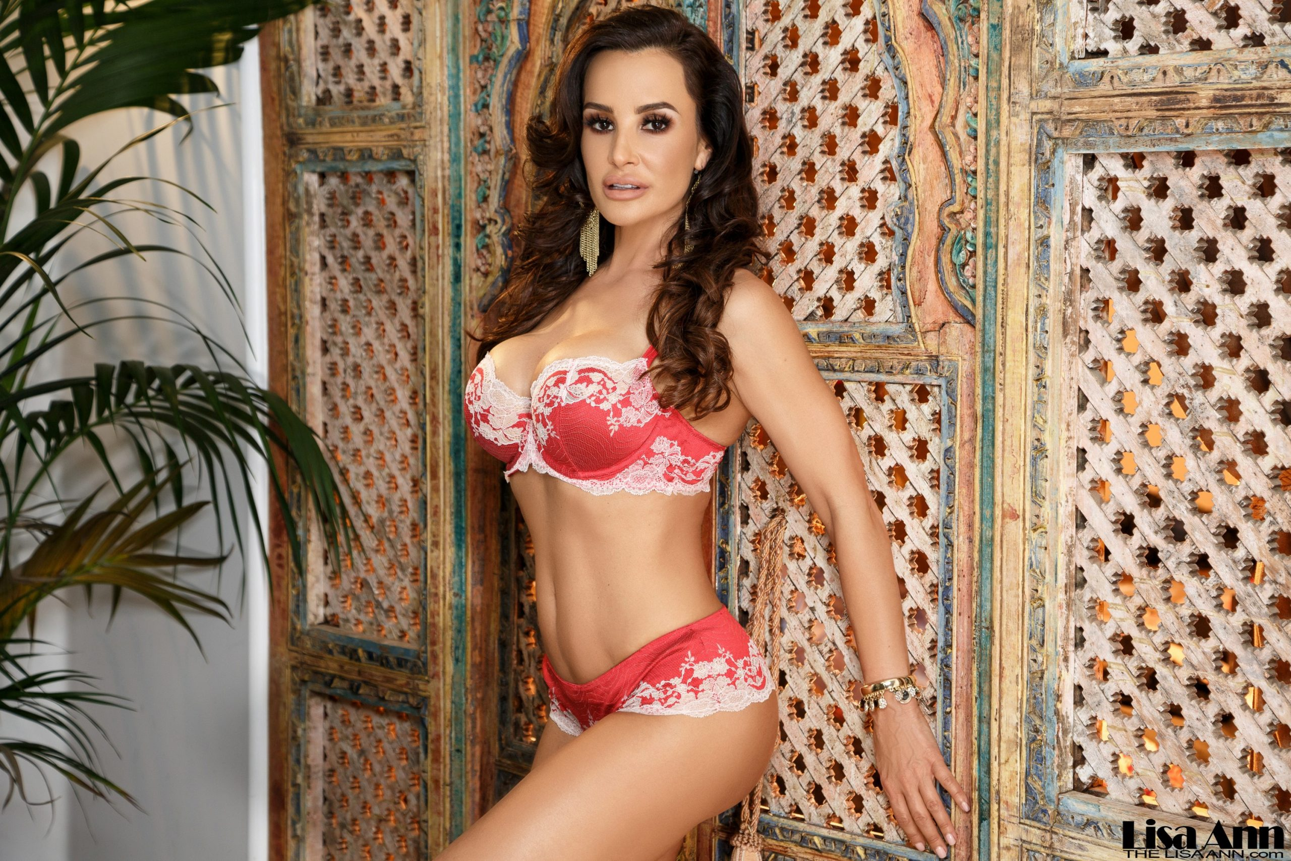 Lisa Ann Big Tits in Sexy Red Lingerie